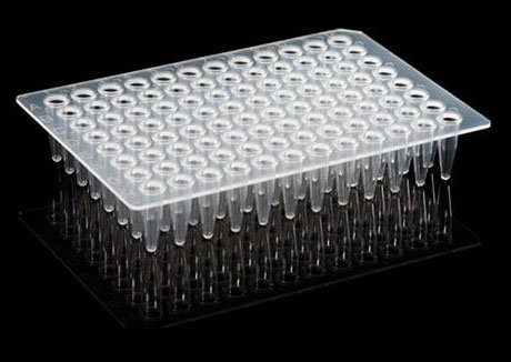 96-pores-PCR-plate-no-hemline